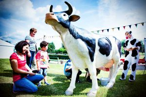 konkurs-dojenia-sztucznej-krowy